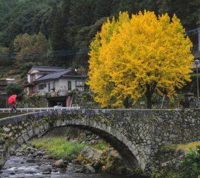 東陽町川俣 笠松橋